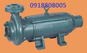may-bom-chim-truc-ngang-lubi-lhs20-7-5kw-10hp-3ph-380v